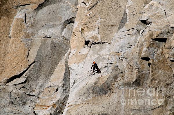 Rock Climber On El Capitan Print by Mark Newman