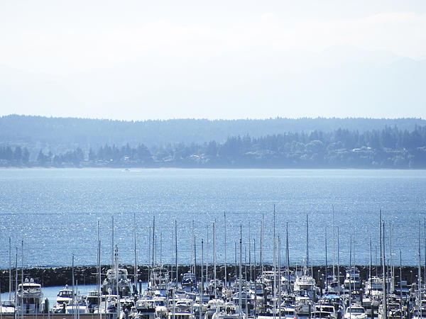 Rocking In The Puget Sound Print by Laura Watts