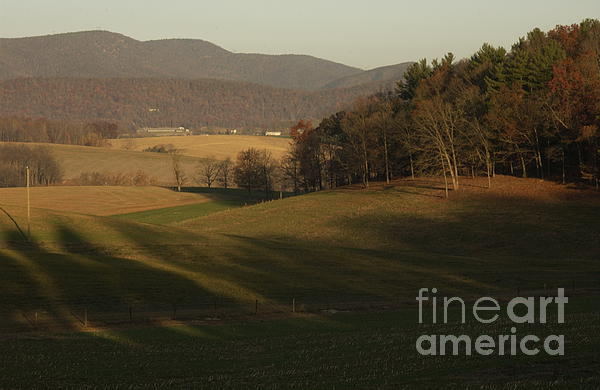Rockingham County Virginia Meadow Print by Anna Lisa Yoder