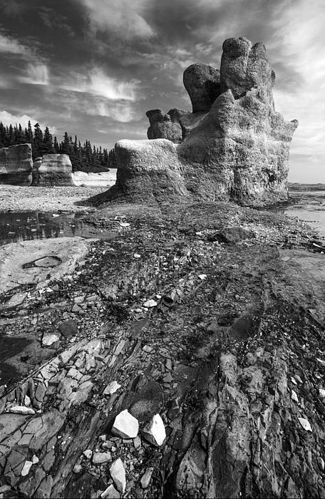 Rocks Print by Arkady Kunysz
