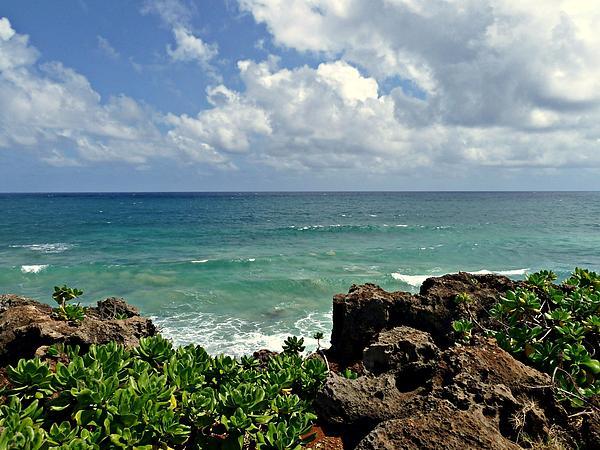 Patricia Strand - Rocky Beach on Kauai