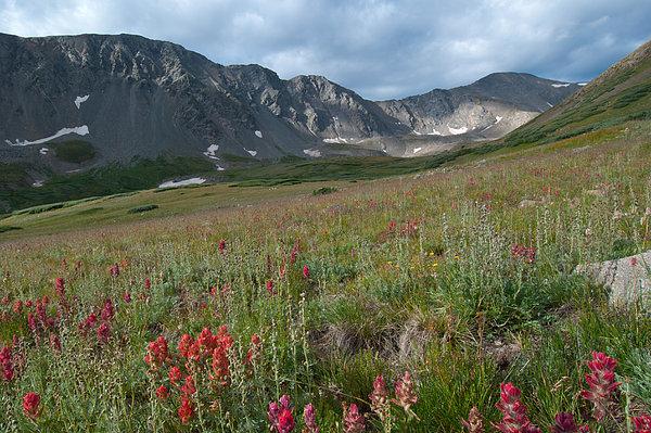 Cascade Colors - Rocky Mountain Morning Landscape