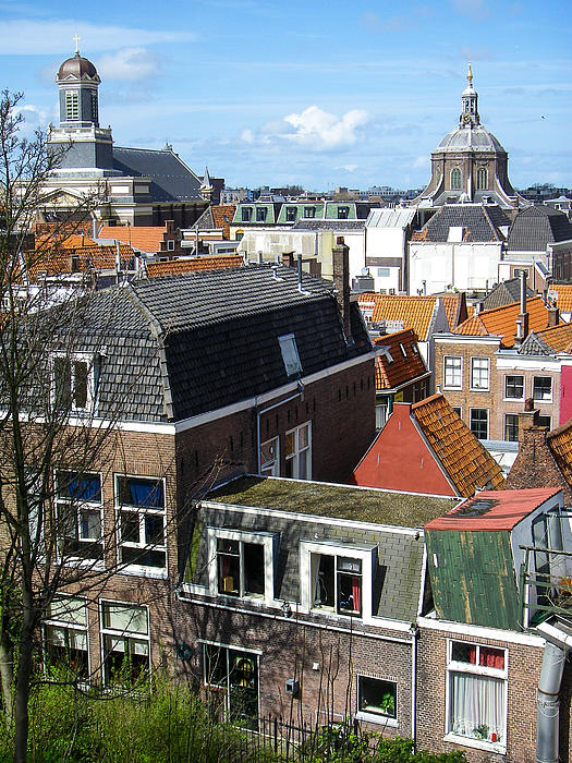 Rooftops Of Leiden Holland Print by Robert Ford