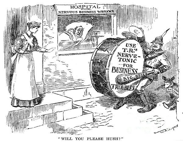 Roosevelt Cartoon, 1908 Print by Granger