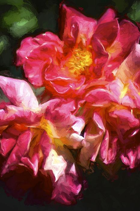 Rose 115 Print by Pamela Cooper