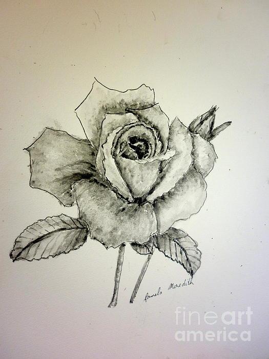 Rose In Monotone Print by Pamela  Meredith