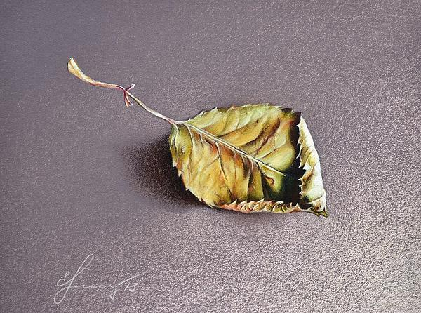 Rose Leaf Print by Elena Kolotusha