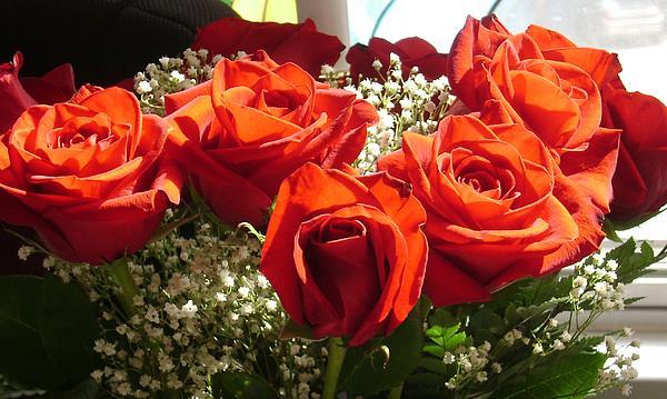 Lesa Weller - Roses from My Family