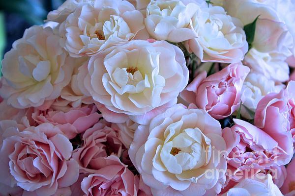 Roses On The Veranda Print by Carol Groenen