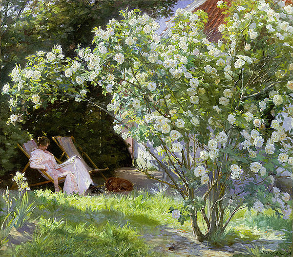 Roses Print by Peder Severin Kroyer