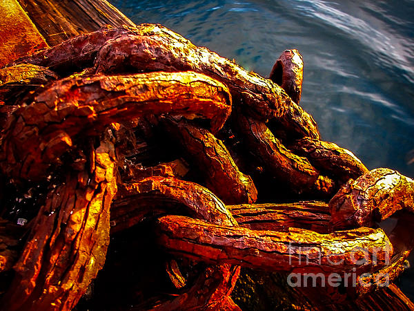 Rust Print by Robert Bales