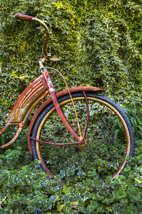 Rusty Wheel Print by Debra and Dave Vanderlaan