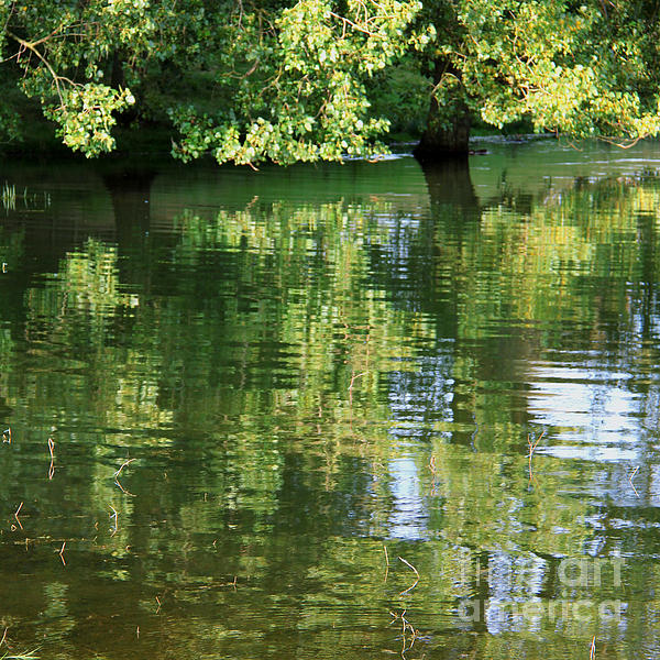 Rutland Water Reflection Print by Karin Ubeleis-Jones