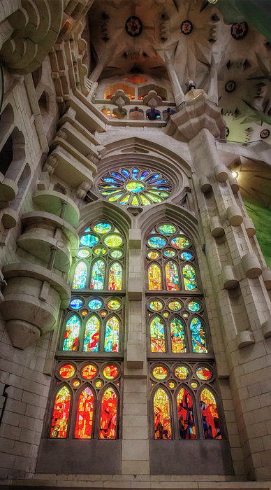 Joan Carroll - Sagrada Familia Window