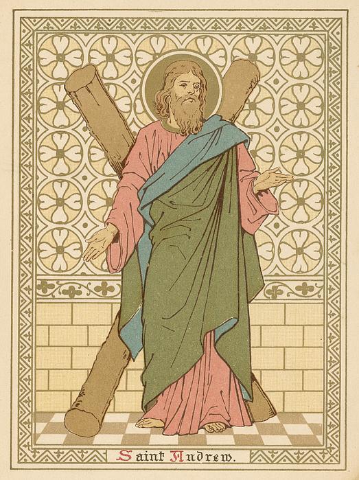 Saint Andrew Print by English School