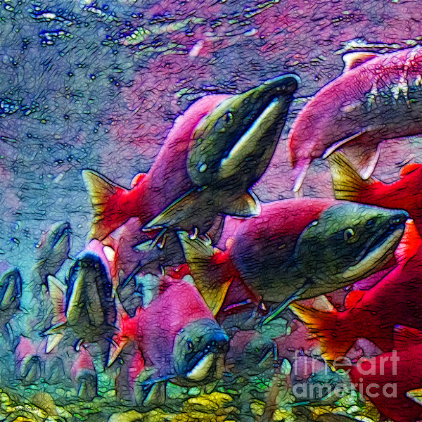 Salmon Run - Square - 2013-0103 Print by Wingsdomain Art and Photography