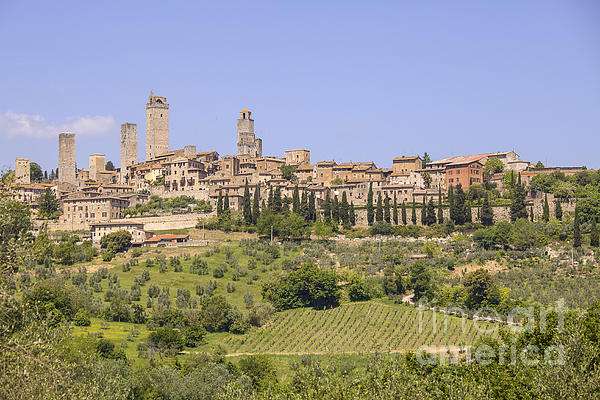 San Gimignano With Vineyards Print by Patricia Hofmeester