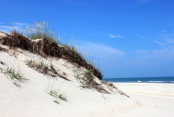 Sand Dunes Of Corolla Outer Banks Obx Print by Design Turnpike