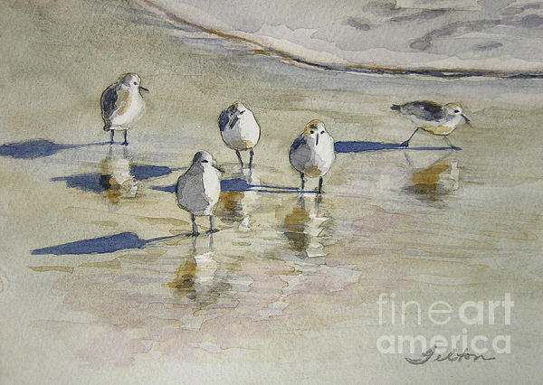 Sandpipers 2 Watercolor 5-13-12 Julianne Felton Print by Julianne Felton