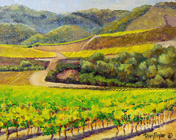 Santa Rita Color Print by Terry Taylor
