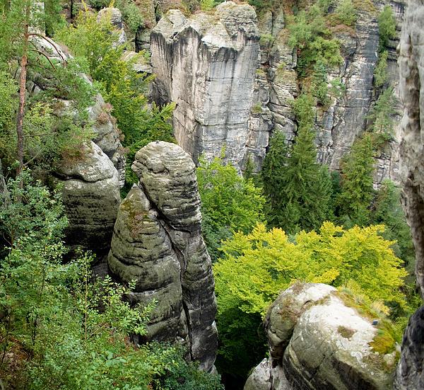 Saxon Switzerland Nature. Print by Iryna Soltyska