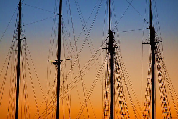 Schooner Masts Martha's Vineyard Print by Carol Leigh
