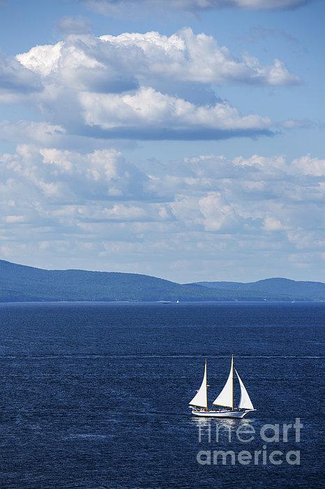 Schooner On The Bay Print by Diane Diederich