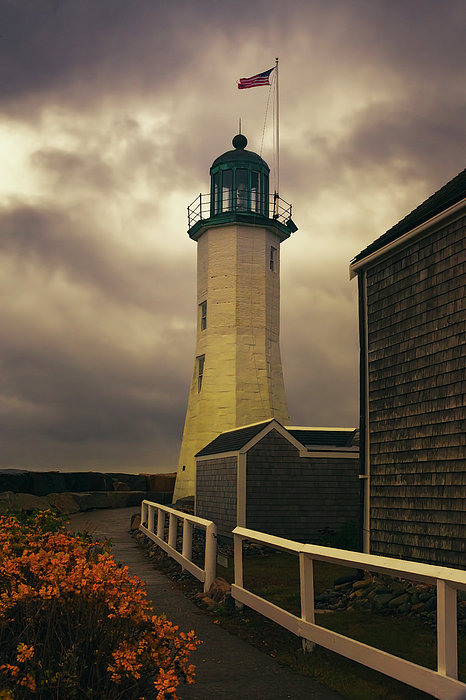 Joan Carroll - Scituate Light