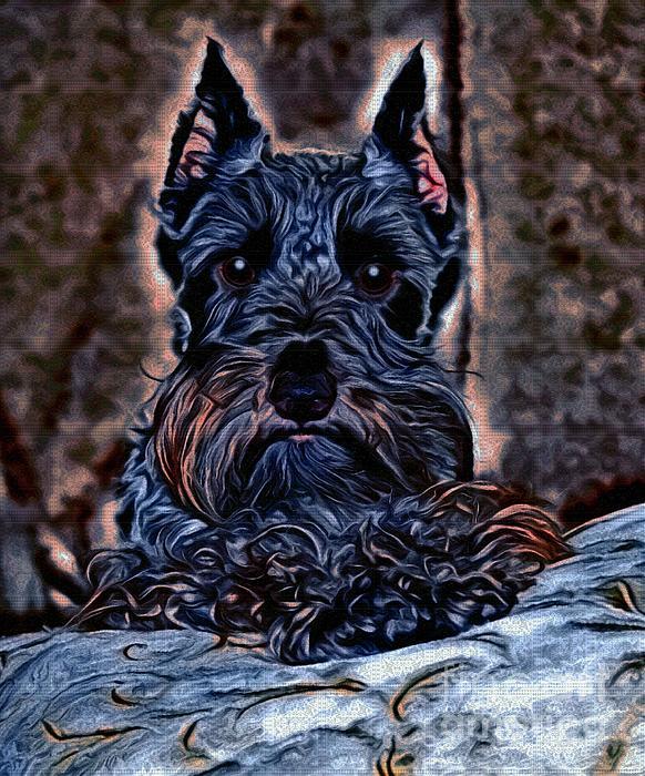 Scottish Terrier Print by Tisha McGee