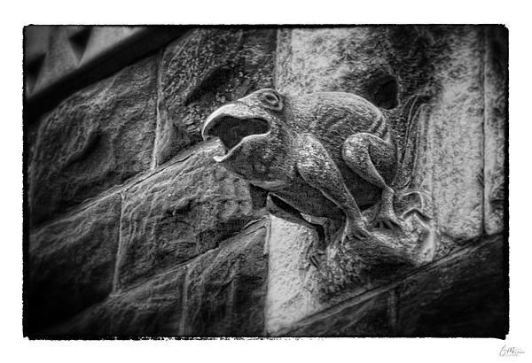Sculpted Frog - Art Unexpected Print by Tom Mc Nemar