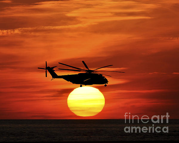Sea Dragon Sunset Print by Al Powell Photography USA