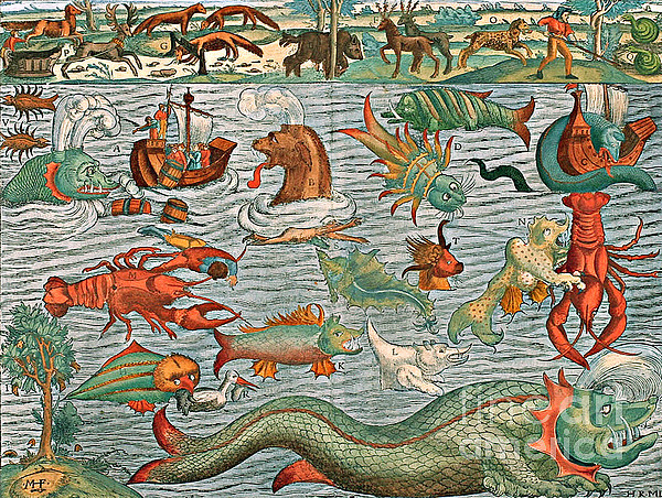 Sea Monsters 1544 Print by Photo Researchers