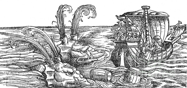 Sea Monsters Or Whales, 16th Century Print by Photo Researchers