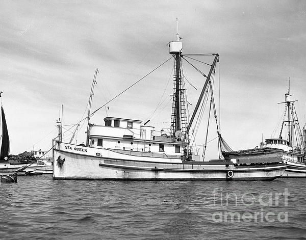 Purse seiner sea queen monterey harbor california fishing for Purse seine fishing