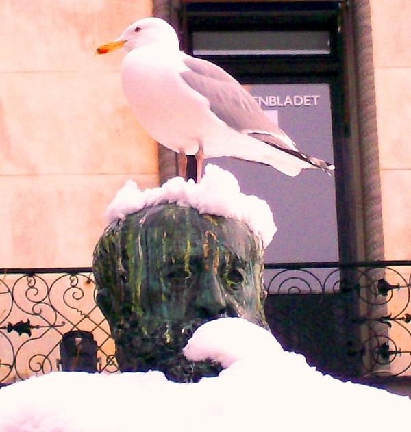 Seagull In The City Print by Hilde Widerberg