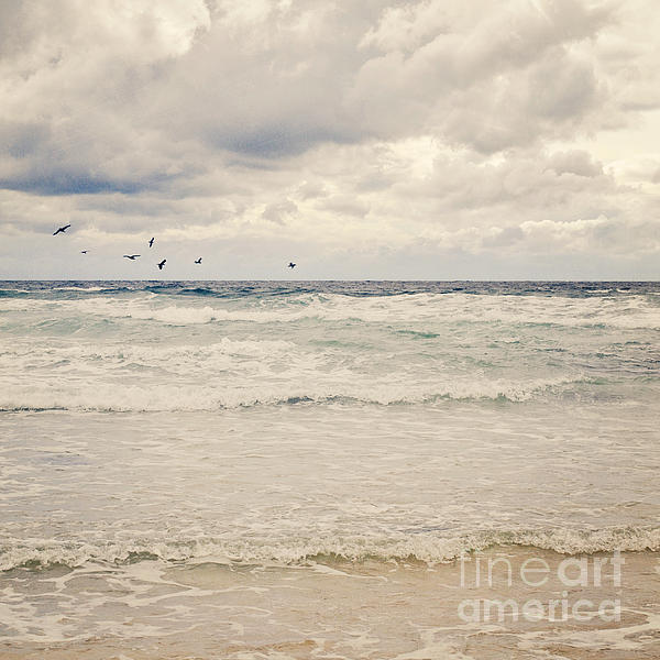 Seagulls Take Flight Over The Sea Print by Lyn Randle