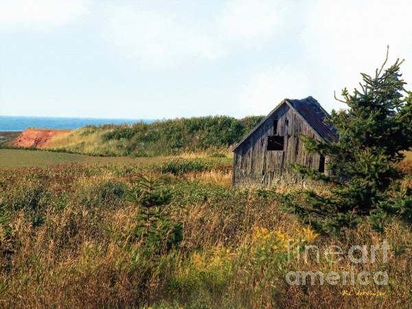 Seaside Shed - September Print by RC DeWinter