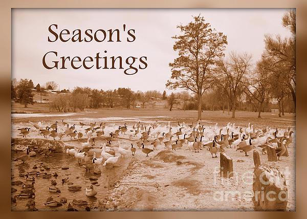 Season's Greetings - Winter Pond Print by Carol Groenen