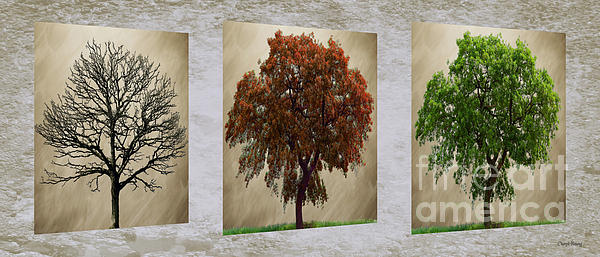 Seasons Triptych Print by Cheryl Young