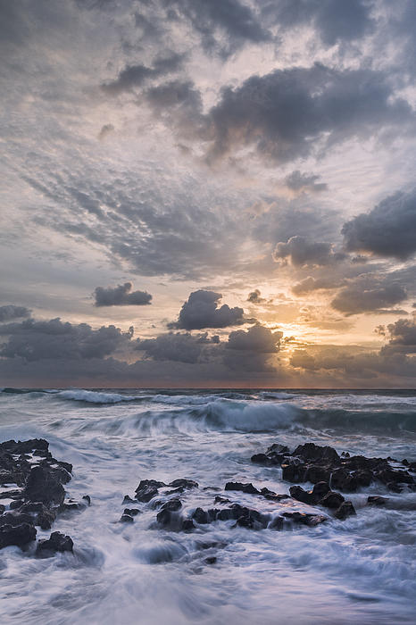See This Print by Jon Glaser