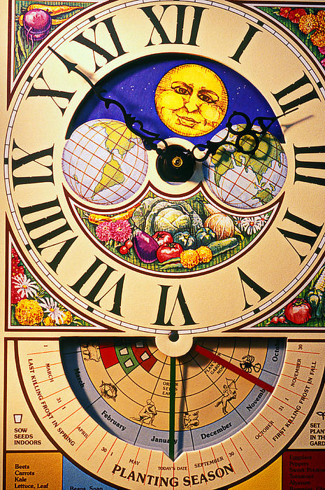 Seed Planting Clock Print by Garry Gay