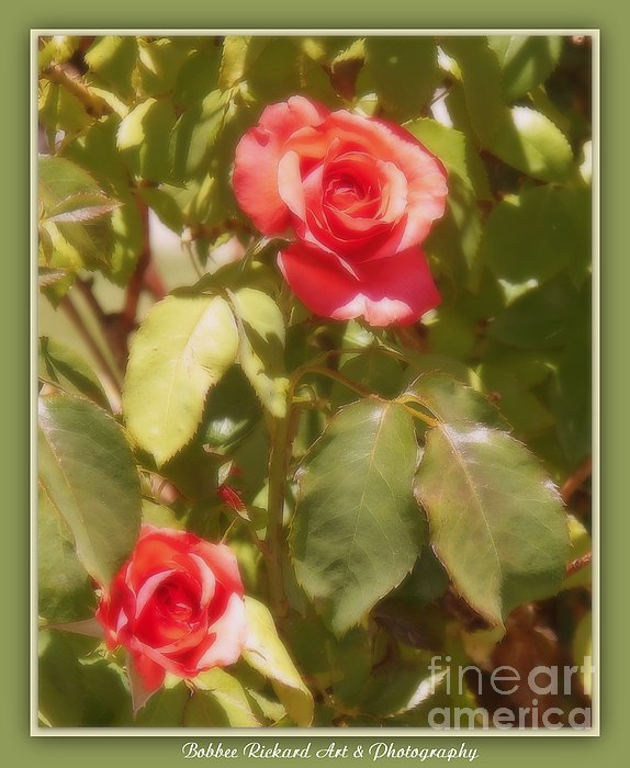Seeing Double Print by Bobbee Rickard