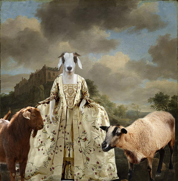 Terry Fleckney - Separating The Sheep From The Goats