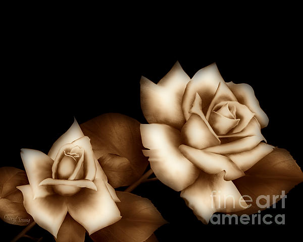 Sepia Roses Print by Cheryl Young