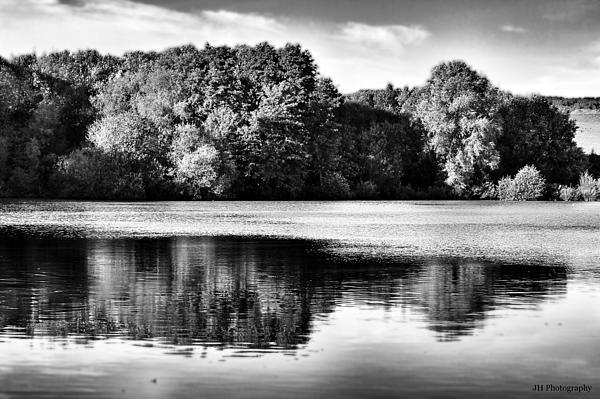 Serene Reflection Print by Jay Harrison