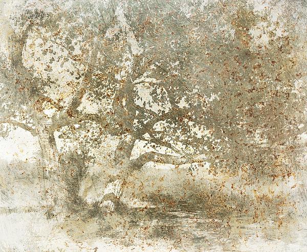Shade Tree Print by Brett Pfister