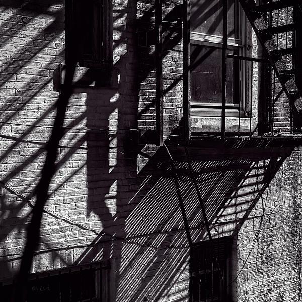 Shadows Print by Bob Orsillo