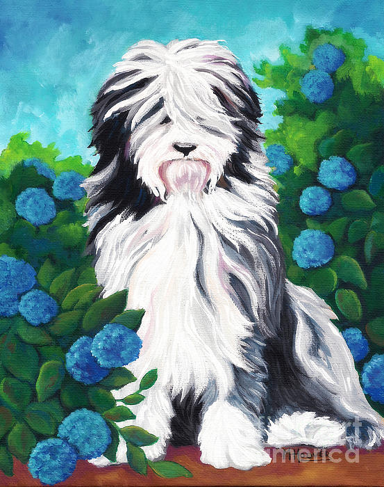 Shaggy Pup Print by MarLa Hoover
