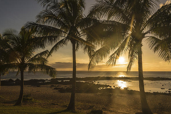Sharks Cove Sunset 2 - Oahu Hawaii Print by Brian Harig