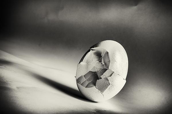 Caitlyn  Grasso - Shattered Remnant